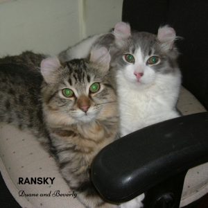 Duane and Beverly Ransky Cats