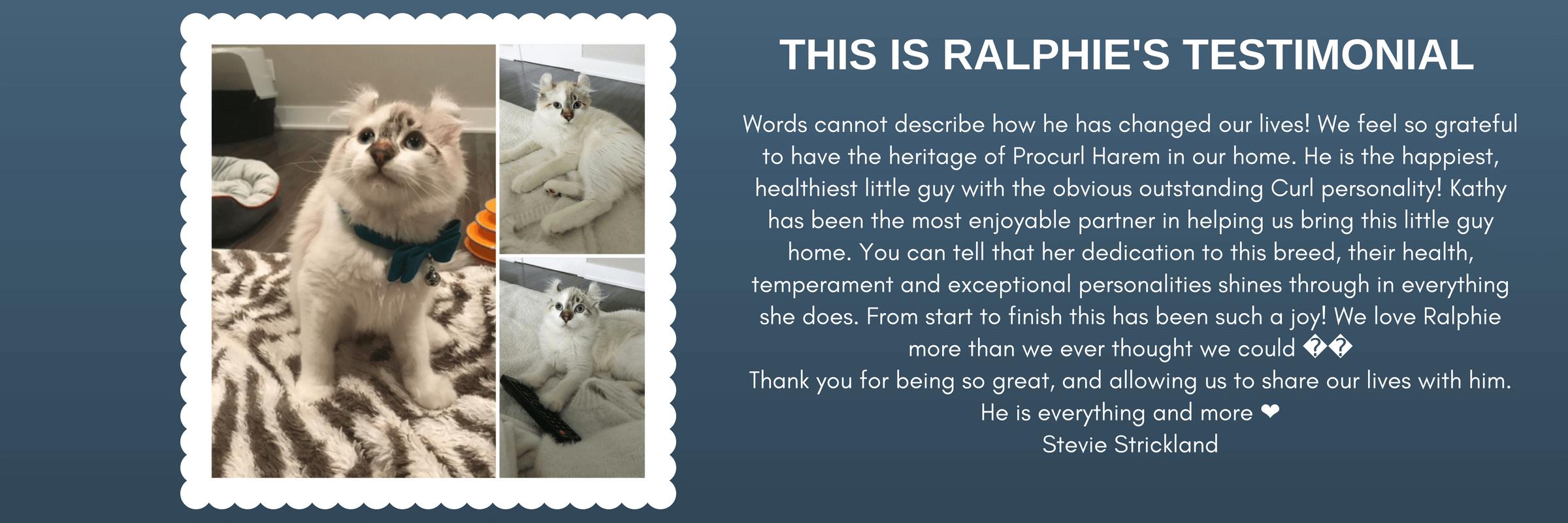 Ralphie's Testimonial