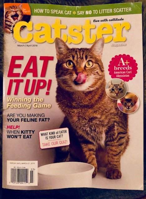 9920a33bb7 American Curl Press and Publicity Catster ...